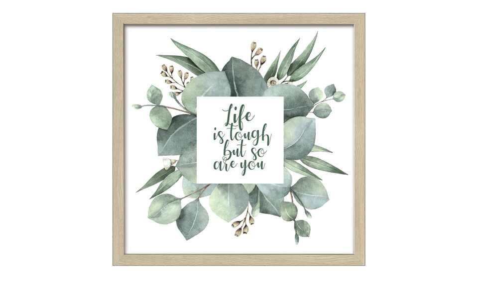 Eucalyptus Life