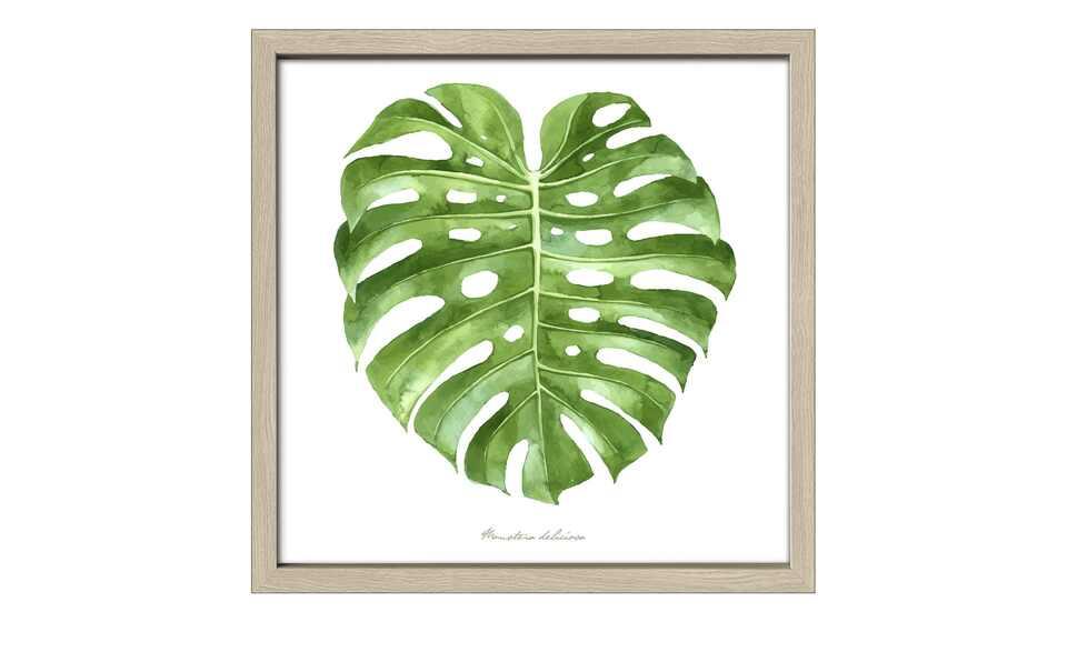 Green Leaf II