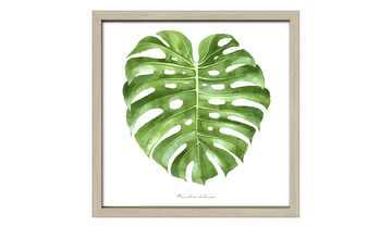 Gerahmtes Bild Scandic  Green Leaf II
