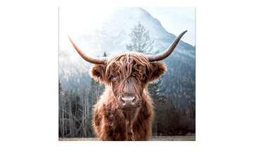 Glasbild 20x20 cm  Highland cattle