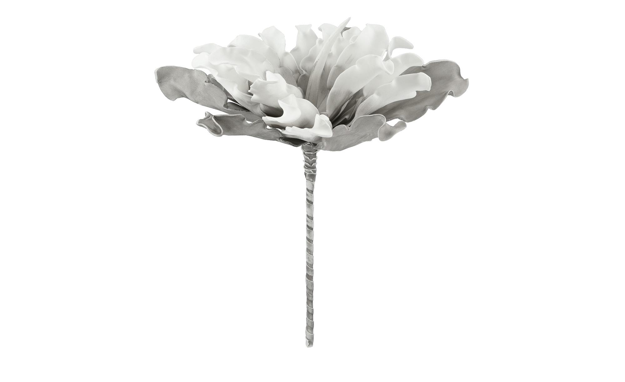 künstliche Blumen-Deko Seidenblumen Protea weiß Kunstblumen