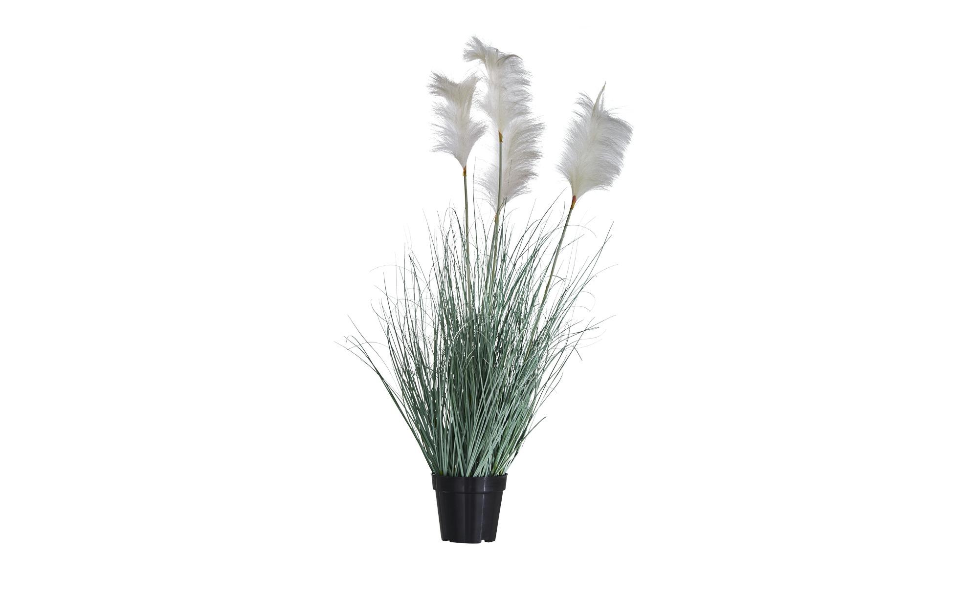 Pampasgras mit Federn ¦ grün Dekoration > Kunstblumen - Höffner   Dekoration > Dekopflanzen > Kunstpflanzen   Grün   Möbel Höffner DE