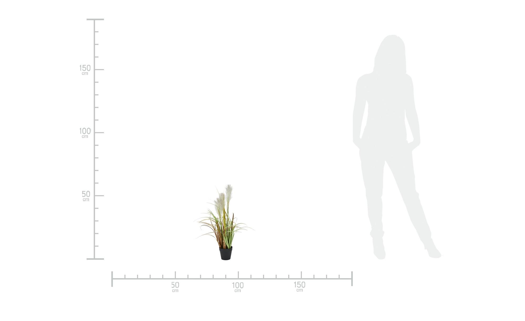 Pampasgras ¦ grün Dekoration > Kunstblumen - Höffner   Dekoration > Dekopflanzen > Kunstpflanzen   Grün   Möbel Höffner DE